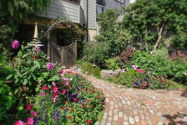 Annies Cottage garden